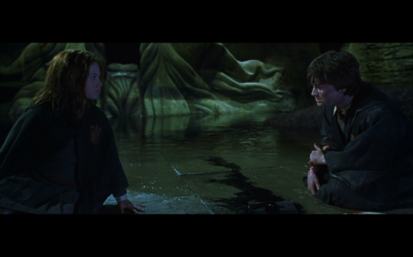 Harry Potter and the Chamber of Secrets - 1118