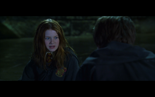 Harry Potter and the Chamber of Secrets - 1119