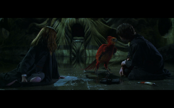 Harry Potter and the Chamber of Secrets - 1121