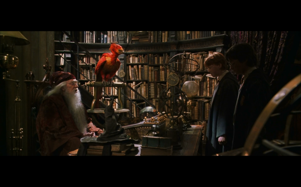 Harry Potter and the Chamber of Secrets - 1133