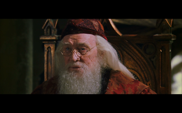 Harry Potter and the Chamber of Secrets - 1161