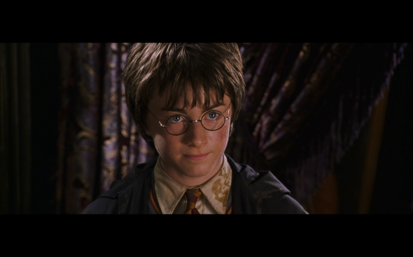 Harry Potter and the Chamber of Secrets - 1167