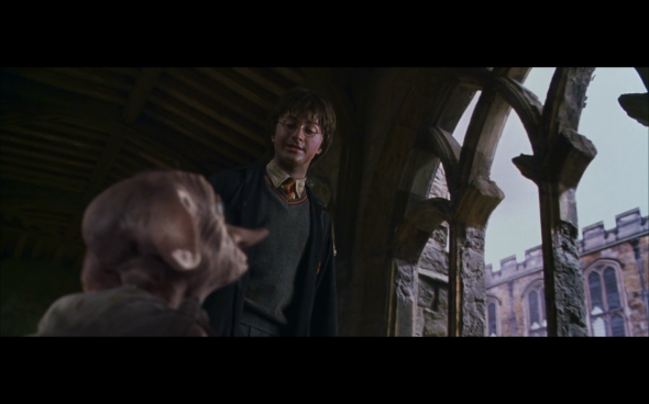 Harry Potter and the Chamber of Secrets - 1181