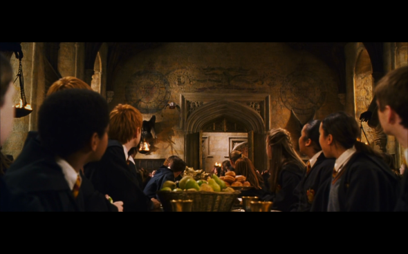 Harry Potter and the Chamber of Secrets - 401