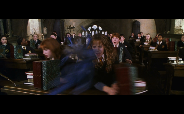Harry Potter and the Chamber of Secrets - 429
