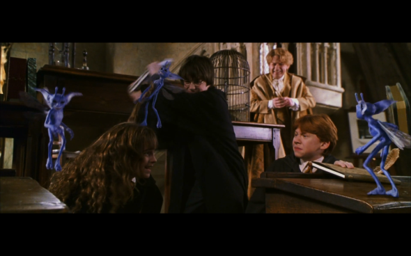 Harry Potter and the Chamber of Secrets - 433