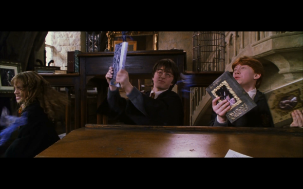 Harry Potter and the Chamber of Secrets - 441