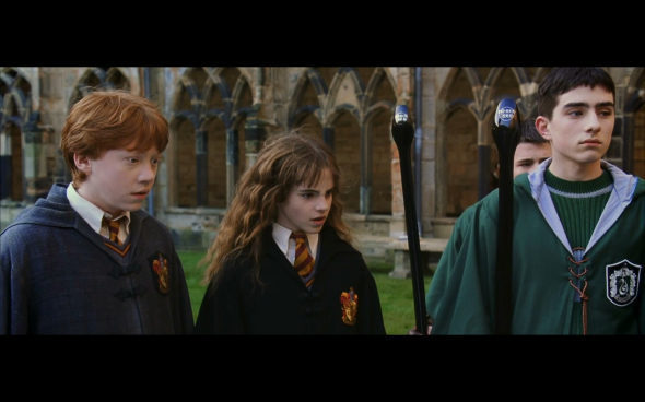 Harry Potter and the Chamber of Secrets - 456