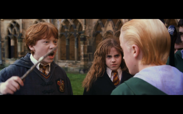 Harry Potter and the Chamber of Secrets - 463