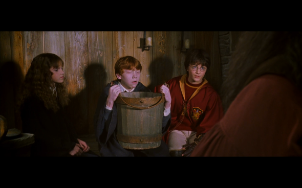 Harry Potter and the Chamber of Secrets - 475