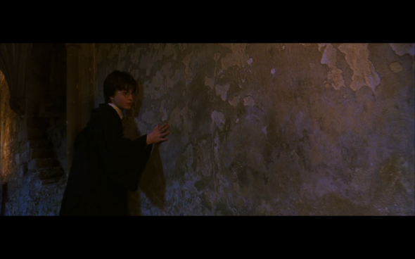 Harry Potter and the Chamber of Secrets - 495
