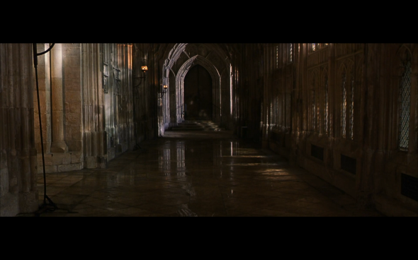 Harry Potter and the Chamber of Secrets - 497