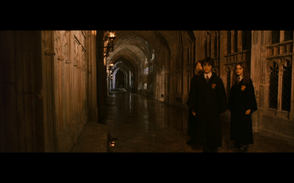 Harry Potter and the Chamber of Secrets - 505