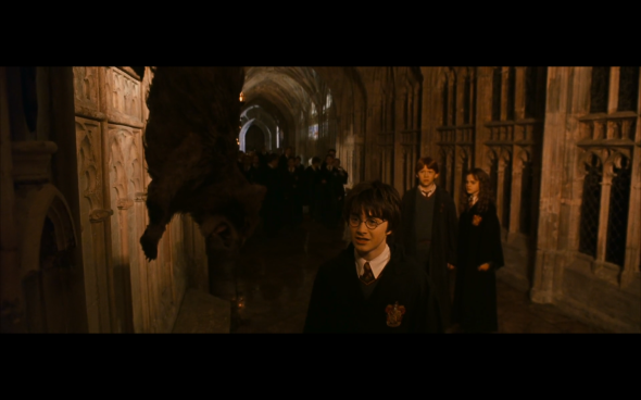 Harry Potter and the Chamber of Secrets - 506