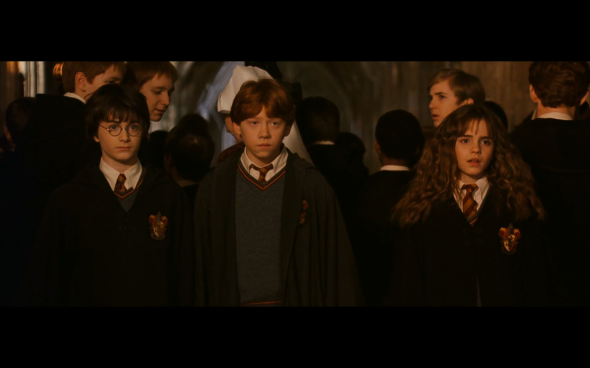 Harry Potter and the Chamber of Secrets - 515