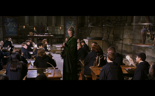 Harry Potter and the Chamber of Secrets - 548