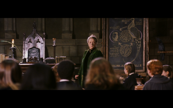 Harry Potter and the Chamber of Secrets - 549