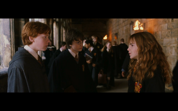 Harry Potter and the Chamber of Secrets - 552