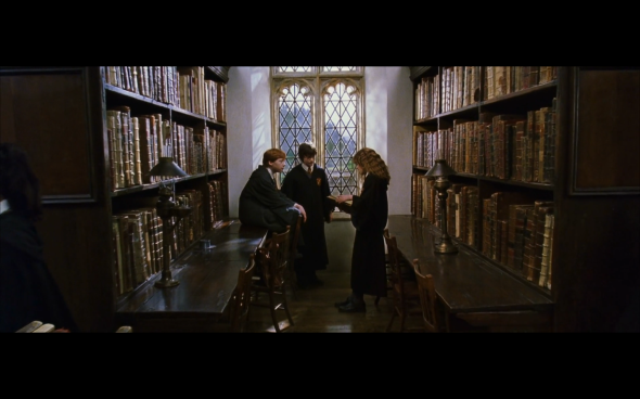 Harry Potter and the Chamber of Secrets - 553