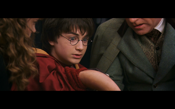 Harry Potter and the Chamber of Secrets - 608