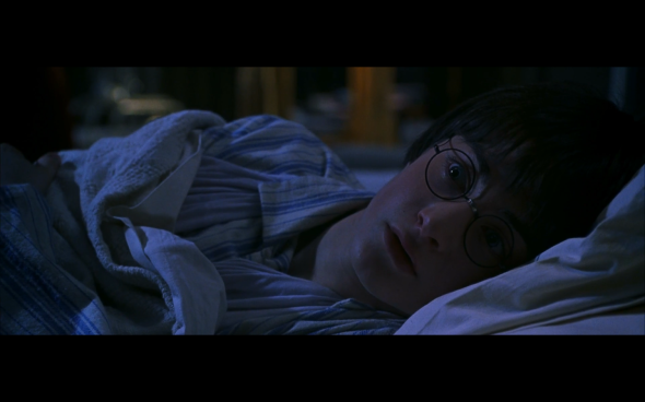 Harry Potter and the Chamber of Secrets - 634
