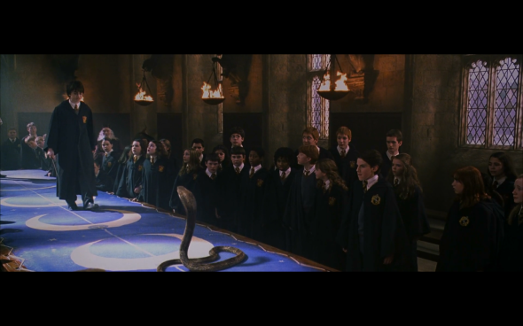 Harry Potter and the Chamber of Secrets - 685