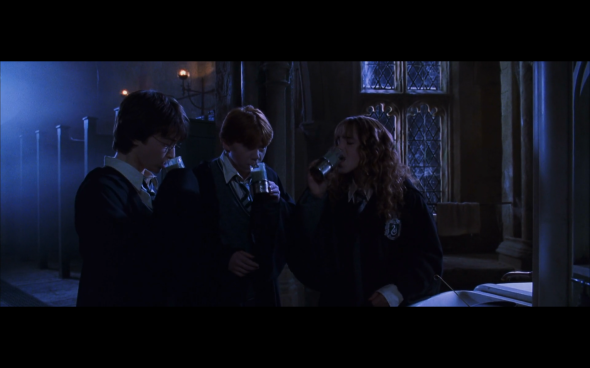 Harry Potter and the Chamber of Secrets - 758