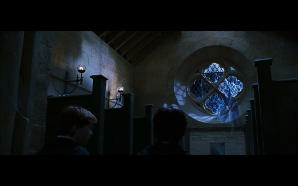 Harry Potter and the Chamber of Secrets - 788