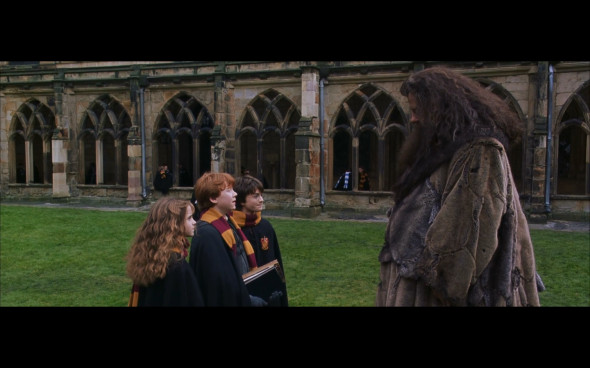 Harry Potter and the Chamber of Secrets - 846