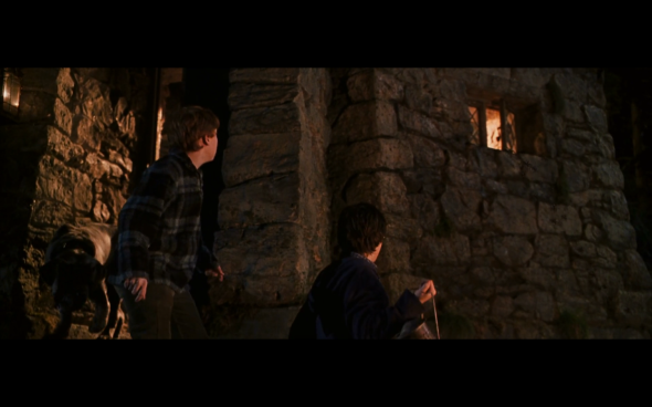 Harry Potter and the Chamber of Secrets - 882