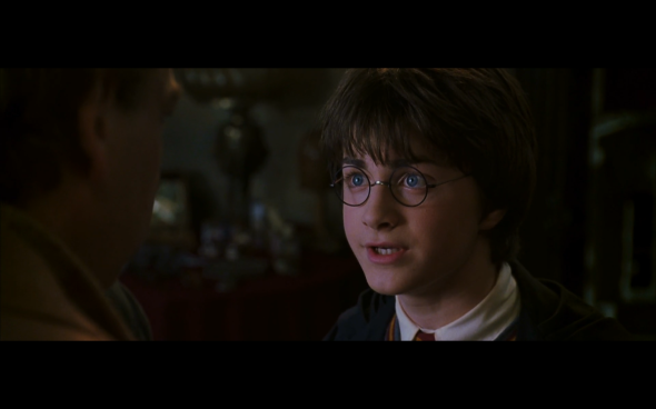 Harry Potter and the Chamber of Secrets - 938