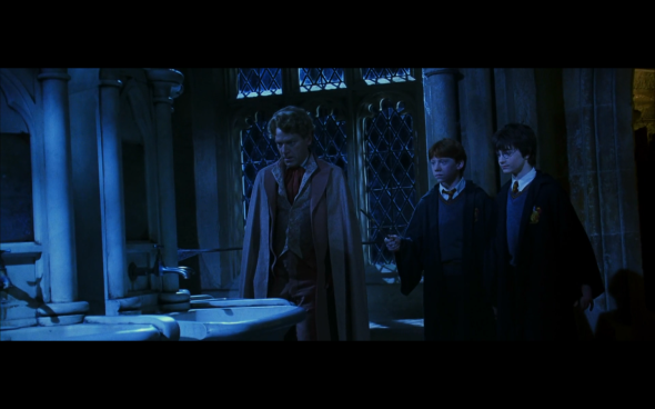Harry Potter and the Chamber of Secrets - 956