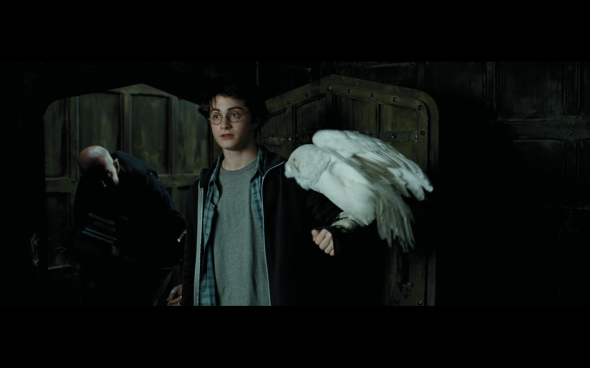 Harry Potter and the Prisoner of Azkaban - 152
