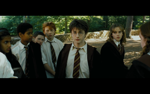 Harry Potter and the Prisoner of Azkaban - 363