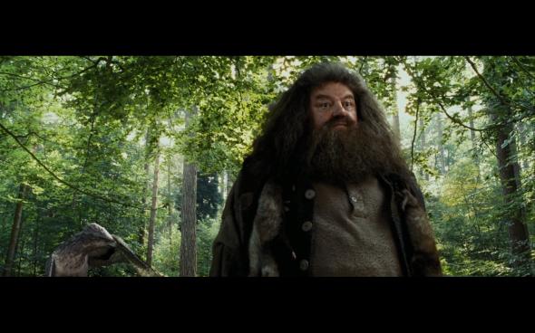 Harry Potter and the Prisoner of Azkaban - 381