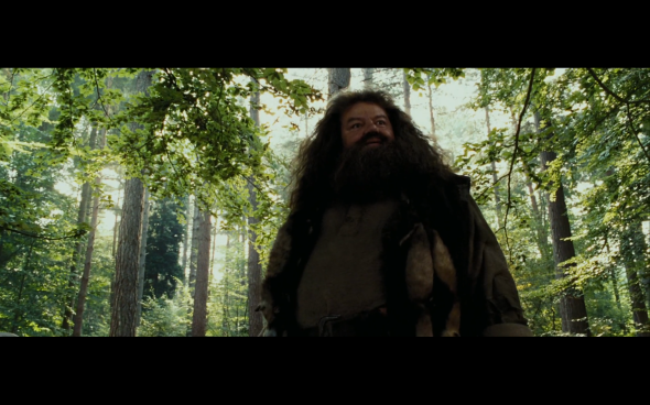 Harry Potter and the Prisoner of Azkaban - 383