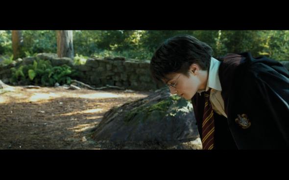 Harry Potter and the Prisoner of Azkaban - 389
