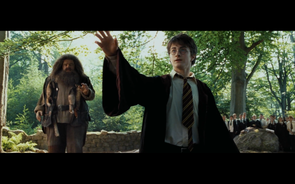 Harry Potter and the Prisoner of Azkaban - 393