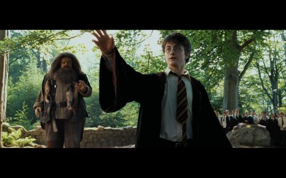 Harry Potter and the Prisoner of Azkaban - 393