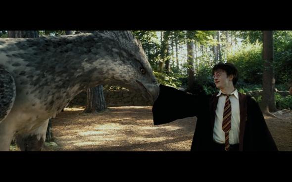Harry Potter and the Prisoner of Azkaban - 401