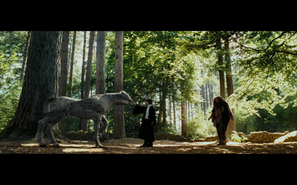 Harry Potter and the Prisoner of Azkaban - 402