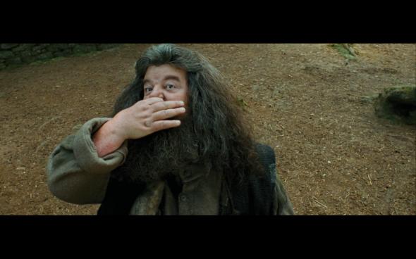 Harry Potter and the Prisoner of Azkaban - 430