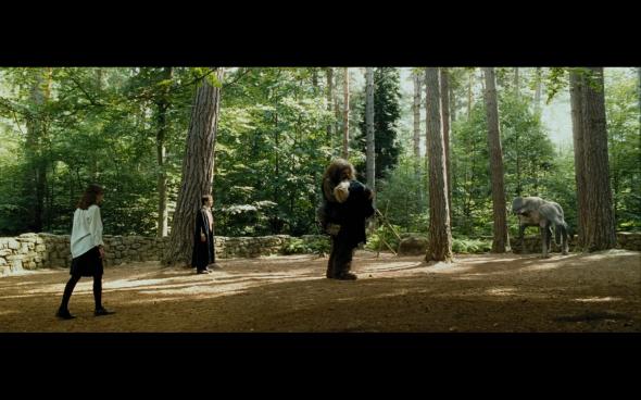 Harry Potter and the Prisoner of Azkaban - 439
