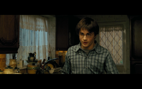 Harry Potter and the Prisoner of Azkaban - 44