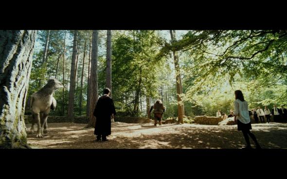 Harry Potter and the Prisoner of Azkaban - 442