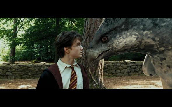Harry Potter and the Prisoner of Azkaban - 443