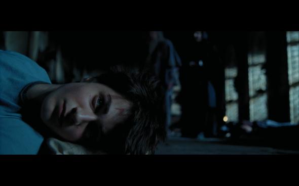 Harry Potter and the Prisoner of Azkaban - 533
