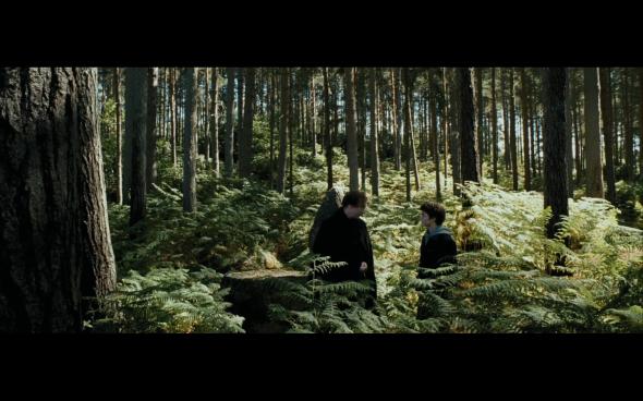 Harry Potter and the Prisoner of Azkaban - 604