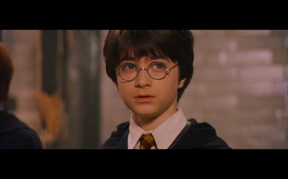 Harry Potter and the Sorcerer's Stone - 431