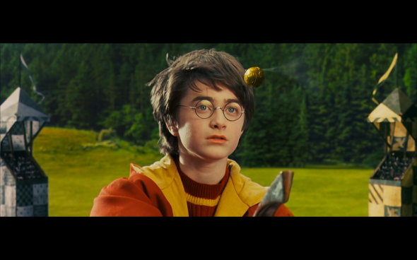 Harry Potter and the Sorcerer's Stone - 466